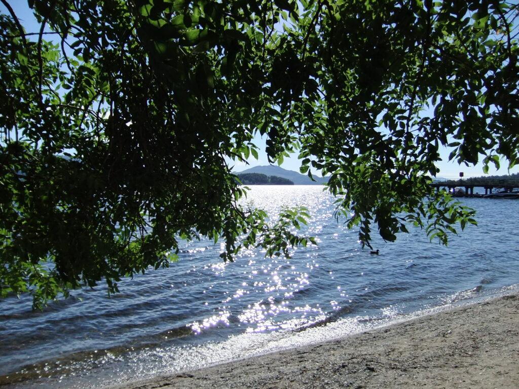 Loch Lomond DSCF1531