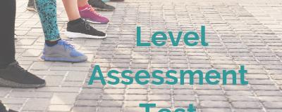 Level Assessment Test